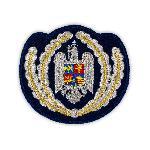 Ecuson Coifura Subofiteri Jandarmi