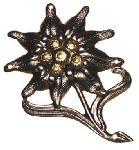 Insigna Bereta Floare de Colt