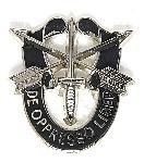 Insigna Special Forces
