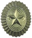 Insigna Stea Gri Rusia