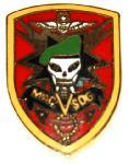 Insigna Vietnam